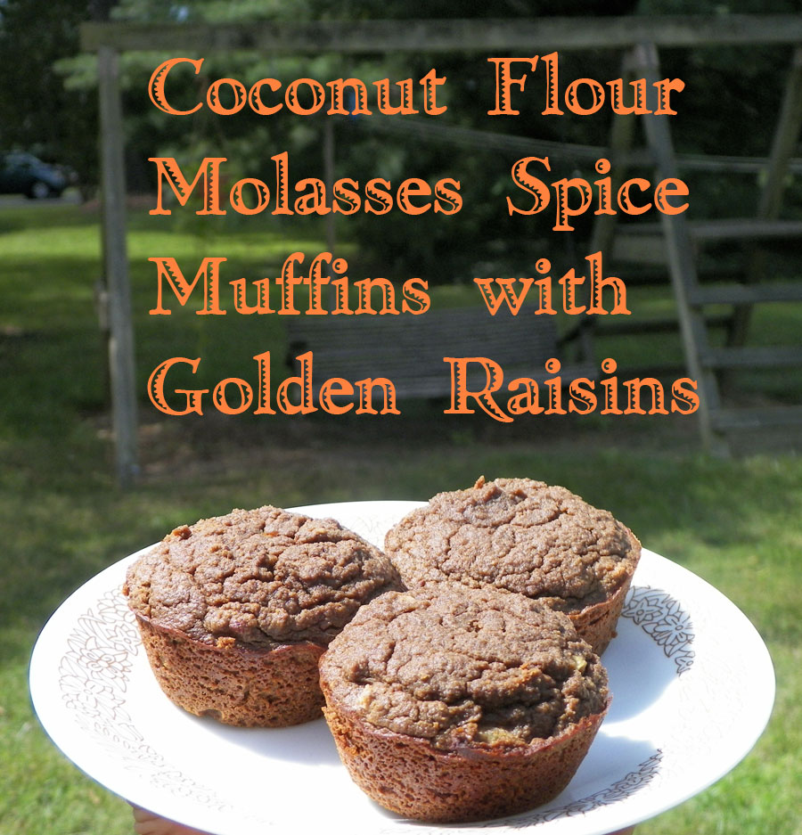 Coconut Flour Molasses Spice Muffins with Golden Raisins ~ Gluten Free Grain Free